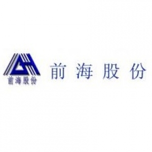 深圳市前海股份有限公司